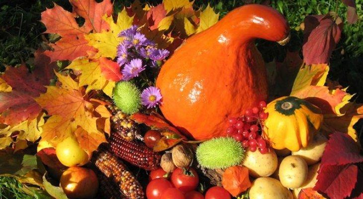 Десять продуктов питания, которые дарит осень